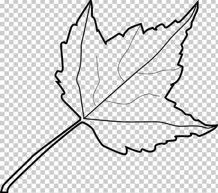 Autumn Leaf Color Drawing PNG, Clipart, Area, Artwork, Autumn, Autumn Leaf Color, Autumn Wreathcolor Free PNG Download