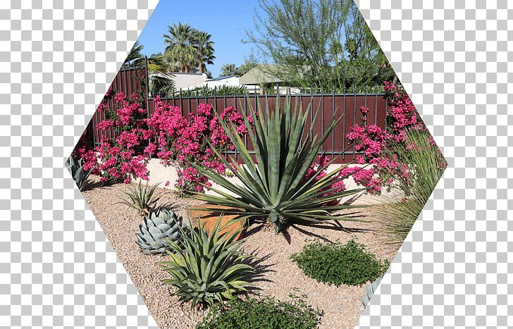 Landscaping Garden Front Yard Landscape Architecture PNG ... on