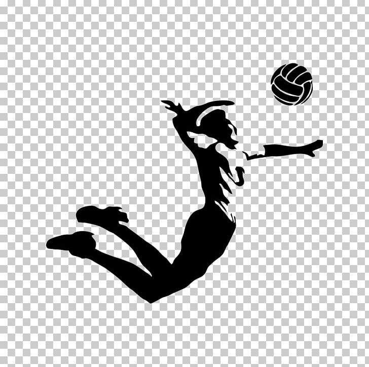 Aesthetic Sketch Aesthetic Volleyball Wallpaper Total Update