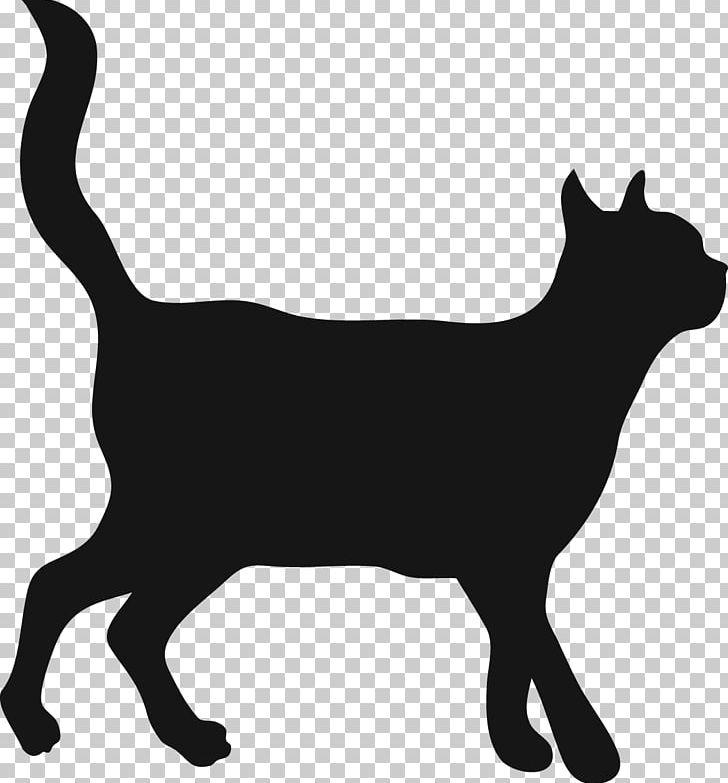 Pet Dachshund Trap Neuter Return Kitten Abyssinian Cat Png Clipart Animal Animals Black Black And White