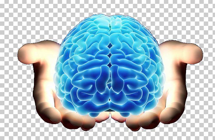 Brain Neurology Cerebrum Agy PNG, Clipart, Agy, Alt Attribute, Brain, Cerebrum, Clinic Free PNG Download