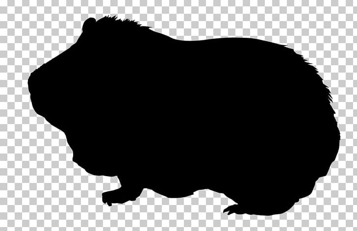 Guinea Pig Silhouette Drawing Png Clipart Animal Animals Black Black And White Common Free Png Download