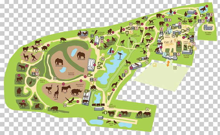 Colchester Zoo Map Colchester Zoo London Zoo Belfast Zoo Map PNG, Clipart, Area