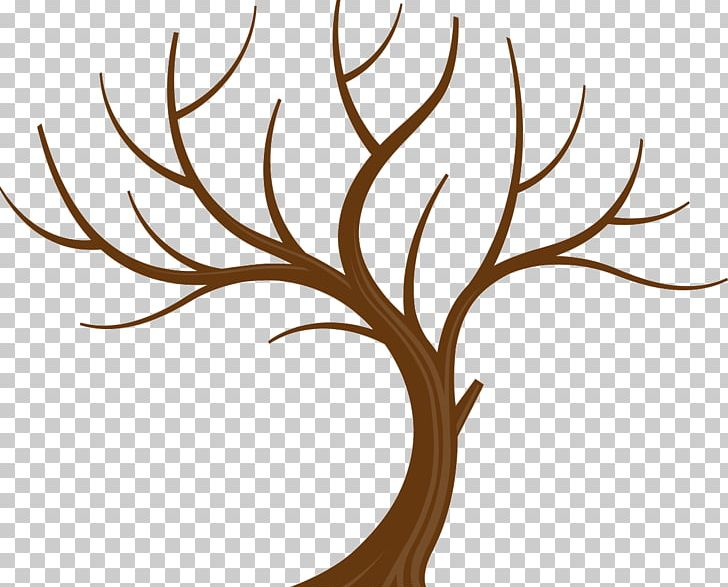 Tree Branch Leaf PNG, Clipart, Branch, Clip Art, Family Tree, Flora, Flower Free PNG Download