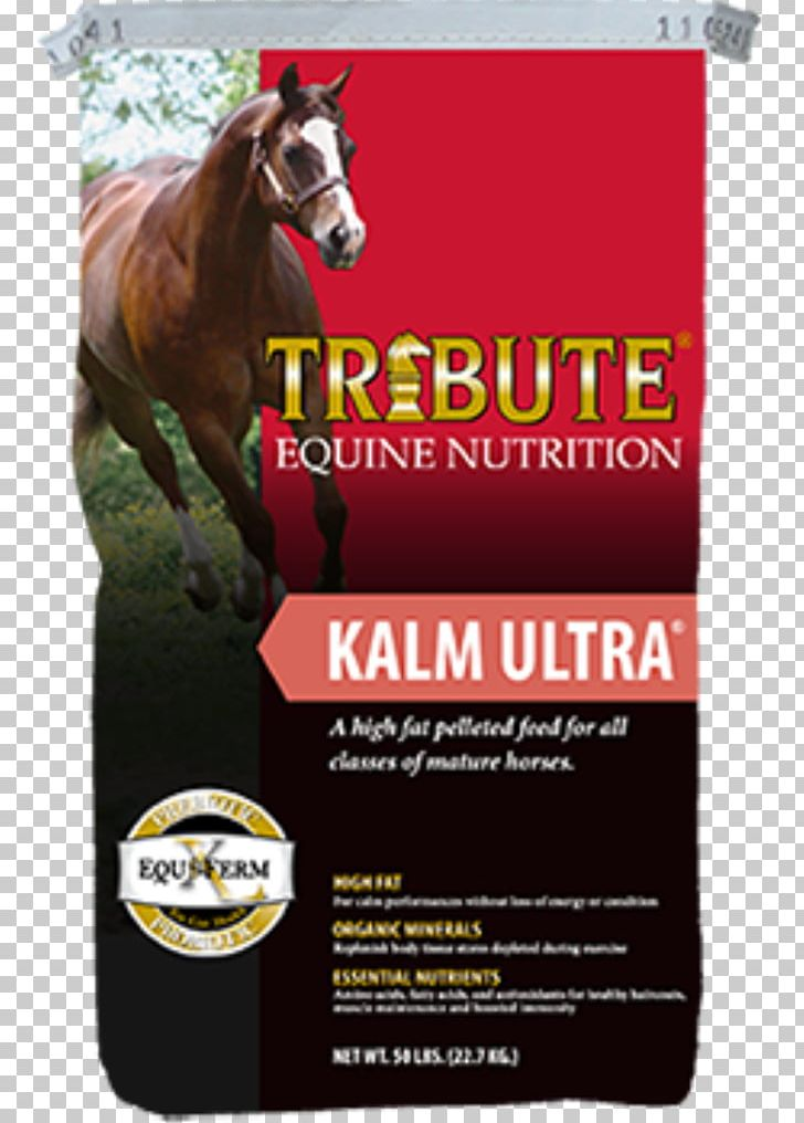 Horse Equine Nutrition Pelletizing Animal Feed Nutrient PNG, Clipart, Advertising, Alfalfa, Animal Feed, Animals, Beet Pulp Free PNG Download