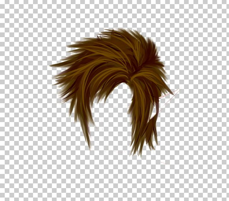 Hairstyle Wig Png Clipart Boy Boy Hair Editing Feather Hair Free Png Download