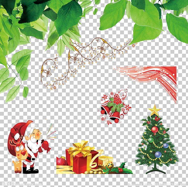 Christmas Leaf Png.Christmas Tree Christmas Ornament Christmas Gift Leaf Png