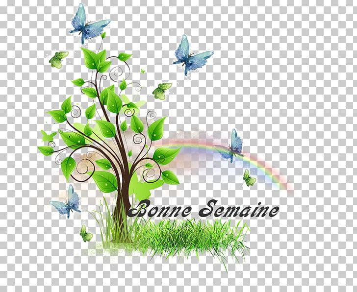 Floral Design Graphic Design Text Illustration Graphics PNG, Clipart, Branch, Computer Wallpaper, Flora, Floral Design, Flower Free PNG Download