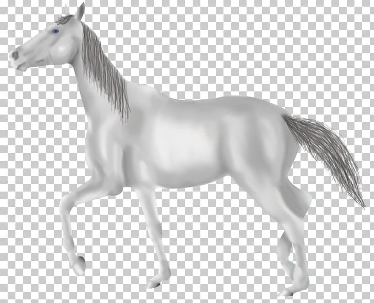 Mane Mustang Foal Mare Stallion PNG, Clipart, Animal Figure, Black And White, Character, Fictional Character, Foal Free PNG Download