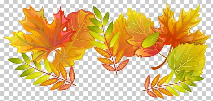 Maple Leaf Paper Autumn PNG, Clipart, Autumn, Autumn Leaf Color, Color, Flower, Leaf Free PNG Download