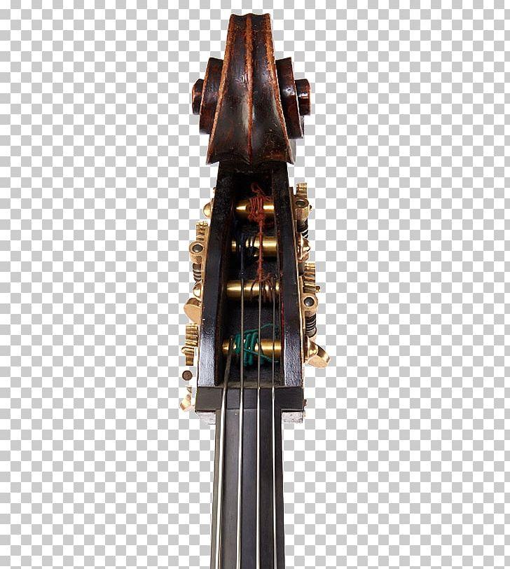 Cello Double Bass Bass Guitar Musical Instruments Photography PNG, Clipart, Bass Guitar, Berserk, Bowed String Instrument, Cello, Double Bass Free PNG Download