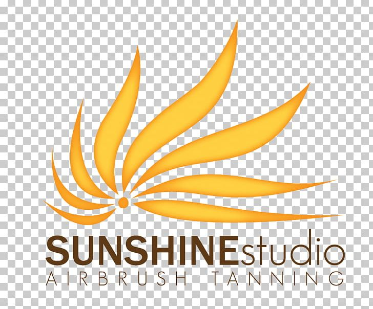 Logo Graphic Design Brand Font PNG, Clipart, Art, Artwork, Brand, Commodity, Flower Free PNG Download