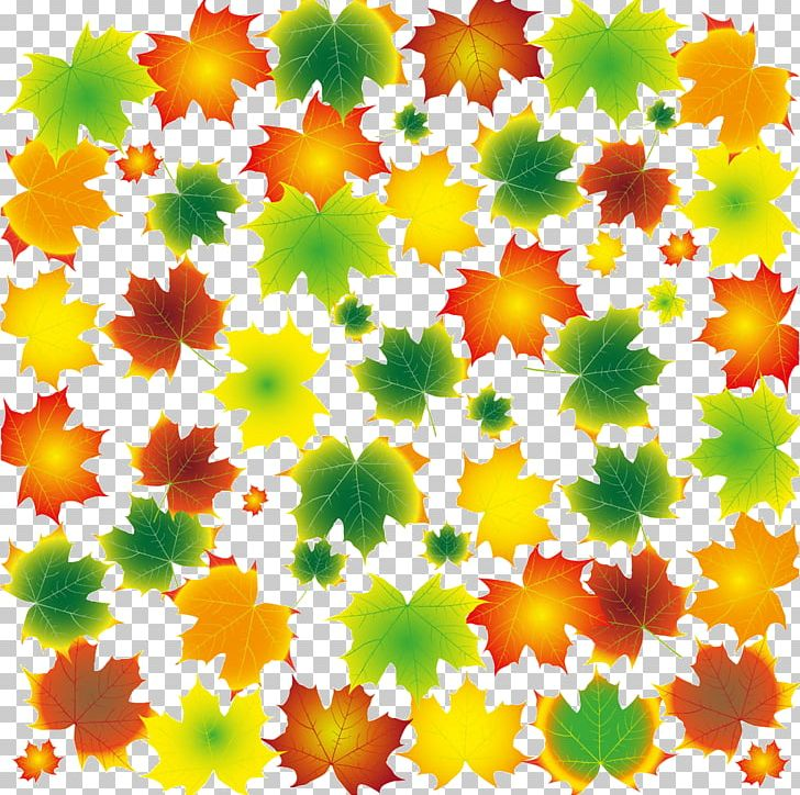 Maple Leaf Tree PNG, Clipart, Autumn, Autumn Leaves, Cartoon, Color, Color Pencil Free PNG Download