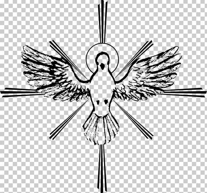 Holy Spirit Confirmation Pentecost PNG, Clipart, Beak, Bird, Black And White, Catholicism, Christian Church Free PNG Download