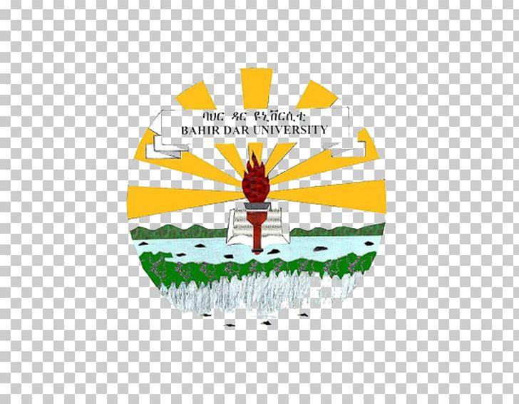 Bahir Dar University Jimma University Addis Ababa University