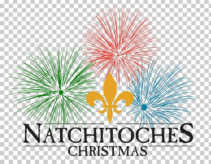 Natchitoches Christmas Festival.Natchitoches Christmas Festival Cane River Holiday Trail Of