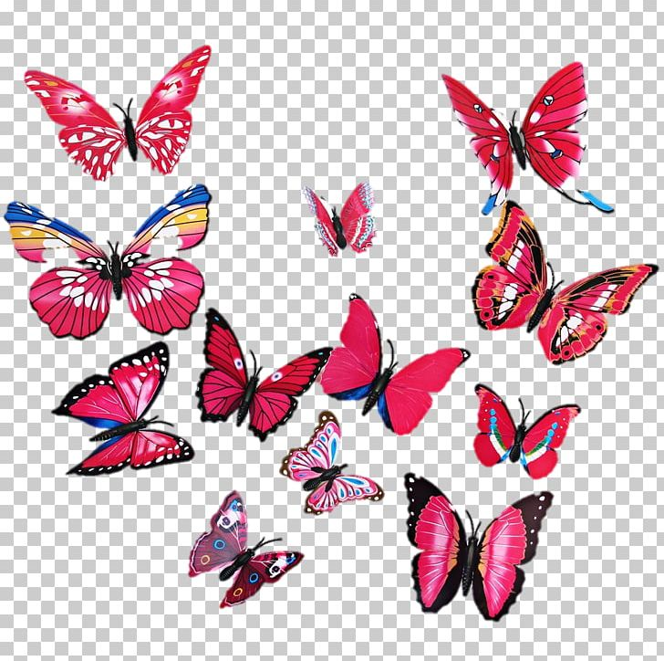 Butterfly Wall Sticker Room Painting Png Clipart Bedroom Brush