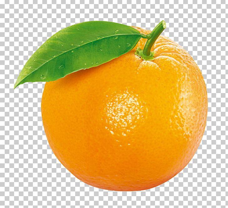 Tangerine Clementine Orange Fruit PNG, Clipart, Auglis, Bitter Orange, Chenpi, Citric Acid, Citron Free PNG Download