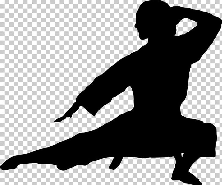 Silhouette Karate Martial Arts PNG, Clipart, Black, Black And White, Clip Art, Human Behavior, Joint Free PNG Download