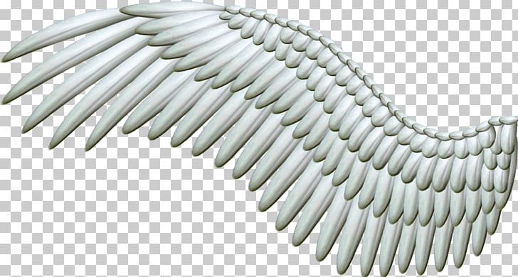Wings PNG, Clipart, Wings Free PNG Download