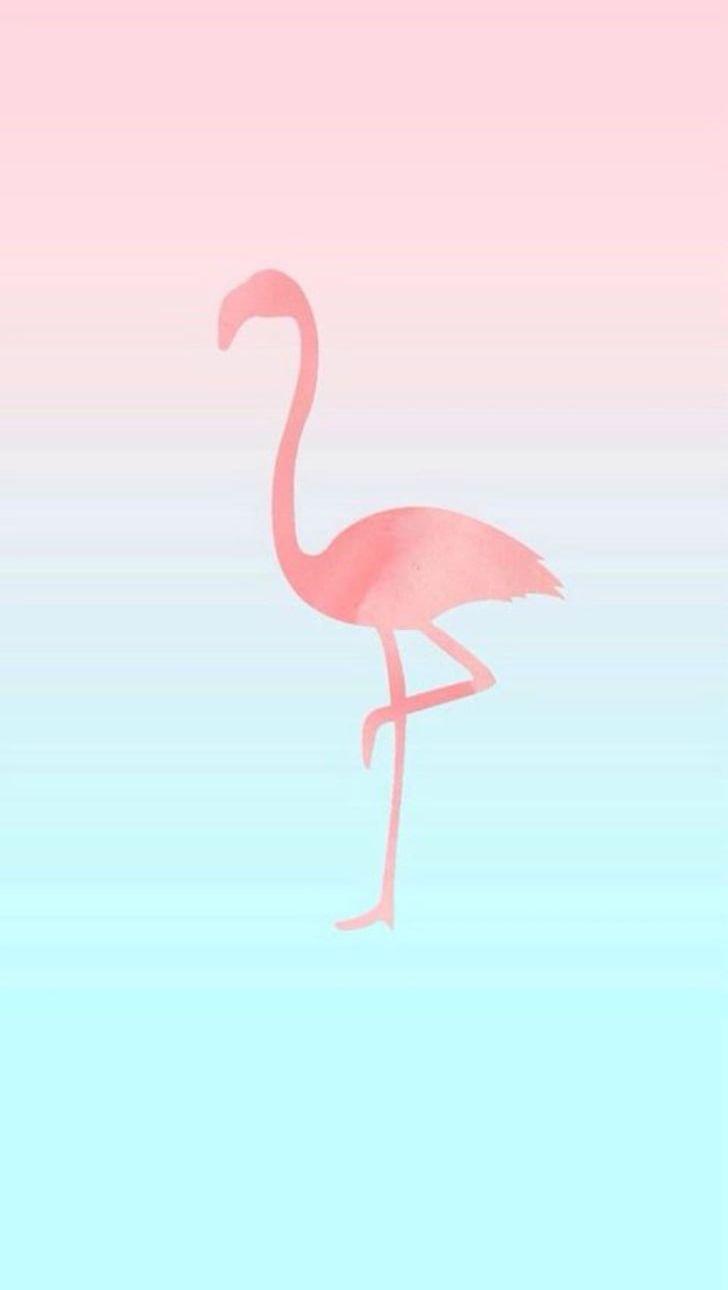Iphone 6 Iphone 7 Flamingos Desktop Png Clipart