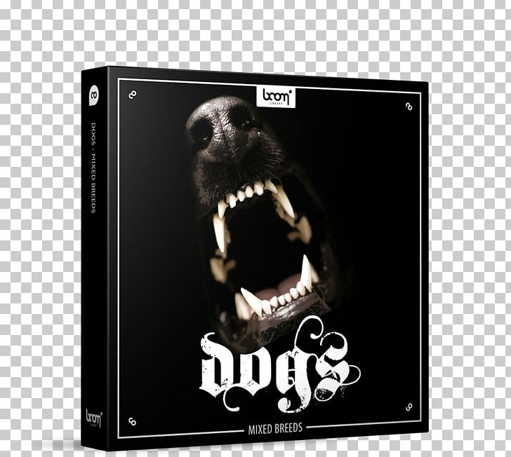 Dog Sound Effect Coyote Sample Library PNG, Clipart, Animals