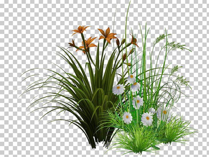 Flower Garden Png Clipart Clip Art Cut Flowers Cutting Desktop Wallpaper Flora Free Png Download