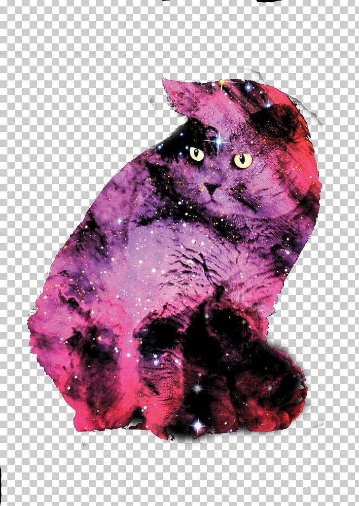 British Shorthair Labrador Retriever Black Cat Popular Cat Names Galaxy Png Clipart Animal Black Cat Breed