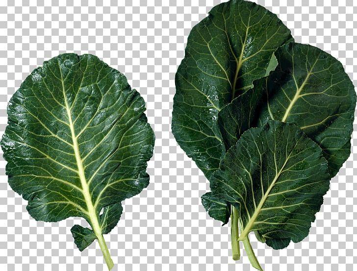 Salad PNG, Clipart, Salad Free PNG Download