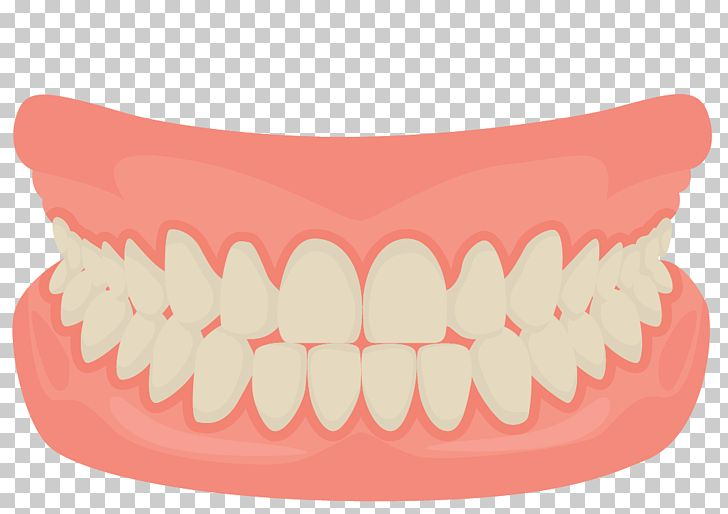 Human Tooth Smile Mouth Dentistry PNG, Clipart, Balloon Cartoon, Boy Cartoon, Care, Cartoon, Cartoon Character Free PNG Download