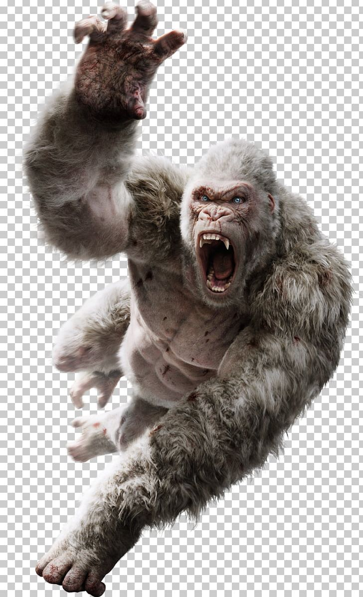 Davis Okoye King Kong Film Art Monster Movie PNG, Clipart, 2018, Action Film, Art, Deviantart, Dwayne Johnson Free PNG Download
