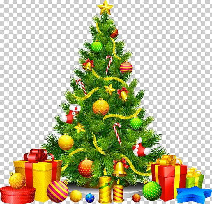 Christmas Tree Christmas Ornament PNG, Clipart, Candy Cane, Christmas, Christmas And Holiday Season, Christmas Card, Christmas Clipart Free PNG Download