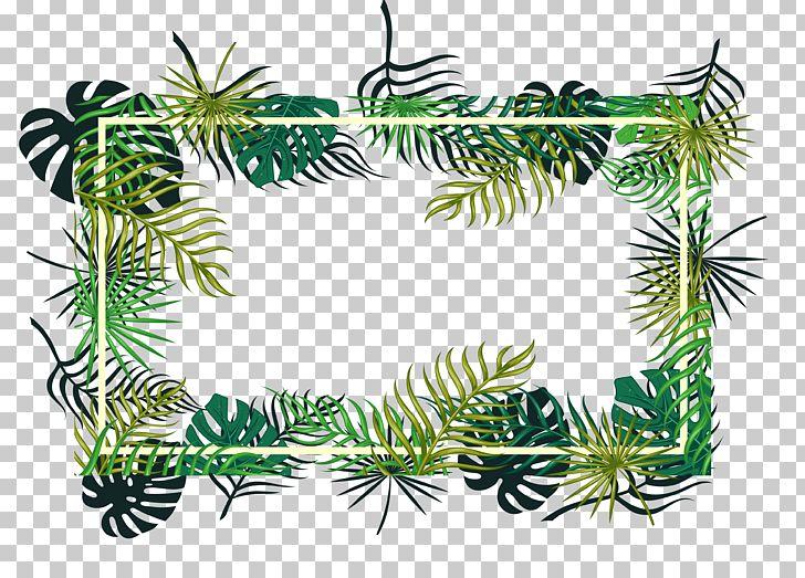 Fir Christmas Ornament Pine Spruce Evergreen PNG, Clipart, Branch, Christmas Decoration, Decorative, Decorative Patterns, Desktop Wallpaper Free PNG Download