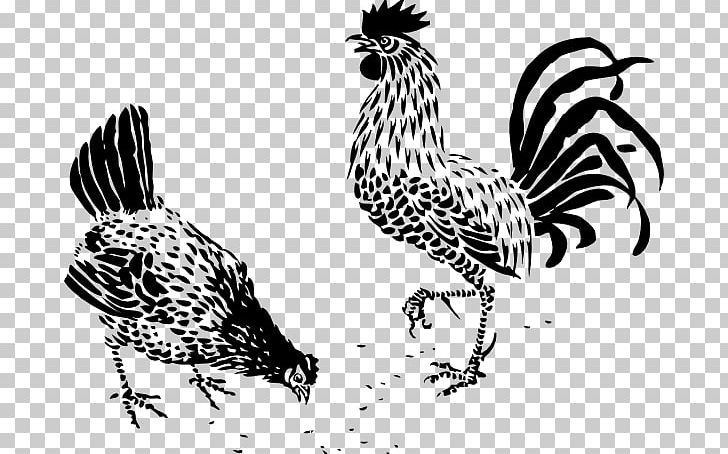 Dorking Chicken Rooster Drawing Poultry Galliformes PNG, Clipart, Art, Beak, Bird, Black And White, Chicken Free PNG Download