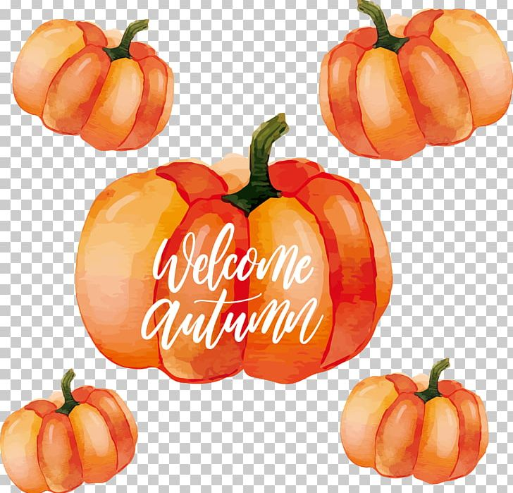 Calabaza Habanero Pumpkin Watercolor Painting PNG, Clipart, Chili Pepper, Encapsulated Postscript, Food, Fruit, Natural Foods Free PNG Download