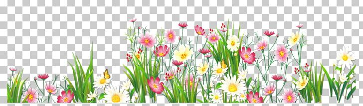 Flower Grasses PNG, Clipart, Artificial Flower, Clipart, Common Daisy, Cut Flowers, Floral Design Free PNG Download