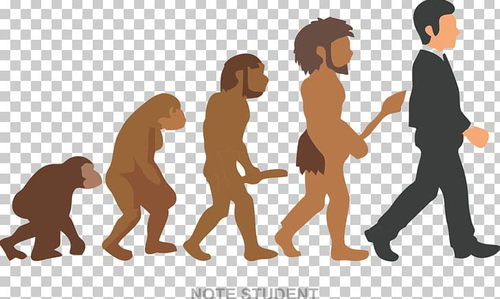 Neandertal Homo Sapiens The Evolution Of Living Things Coloring Book ...