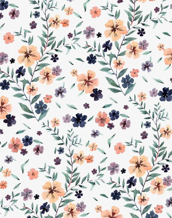 Floral PNG, Clipart, Floral, Floral Clipart, Flowers, Plant, Shading Free PNG Download