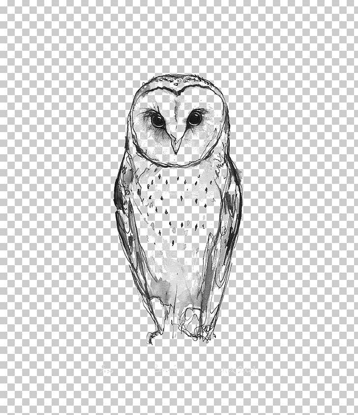 Barn Owl Tattoo Idea Drawing PNG, Clipart, Animal, Animals, Art, Bird, Black Free PNG Download