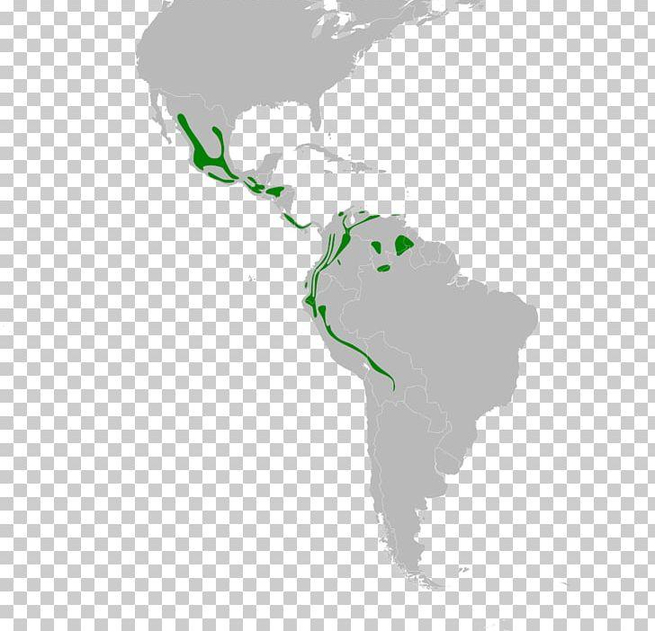 Latin America United States South America Central America ...