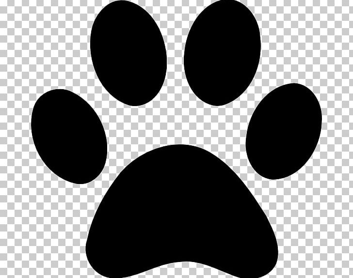 Cat Paw Dog Decal Png Clipart Animals Black Black And White Cat Cat Paw Free Png Cat paw print lion paw print dog paw print paw print jaguar paw print dog paw print stencil image paw print. imgbin com