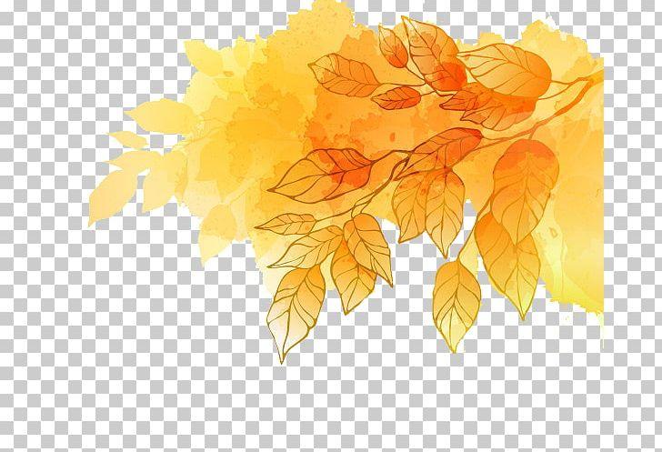 Maple Leaf Autumn Gold PNG, Clipart, Autumn, Autumn Leaf Color, Autumn Leaves, Branch, Desktop Wallpaper Free PNG Download