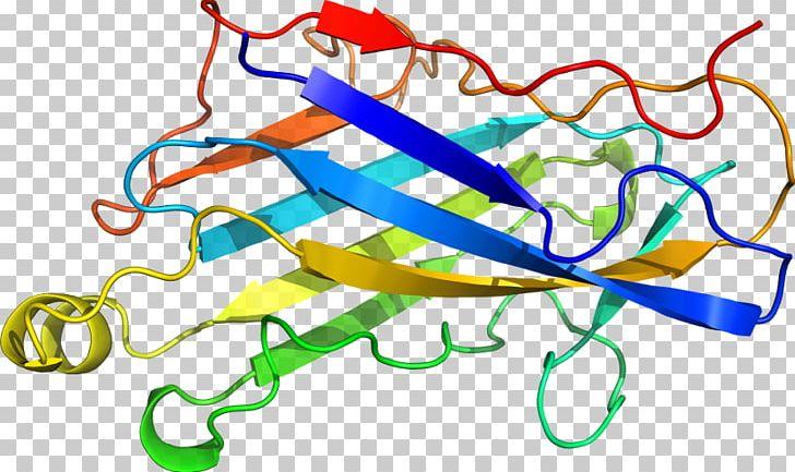 Line Point Organism PNG, Clipart, 4 U, Area, Art, Art Line, Artwork Free PNG Download