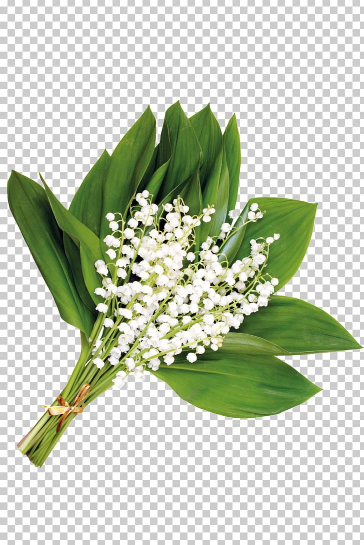 Flower Floral Design Gift PNG, Clipart, Bouquet Of Flowers, Computer Software, Cut Flowers, Download, Floristry Free PNG Download
