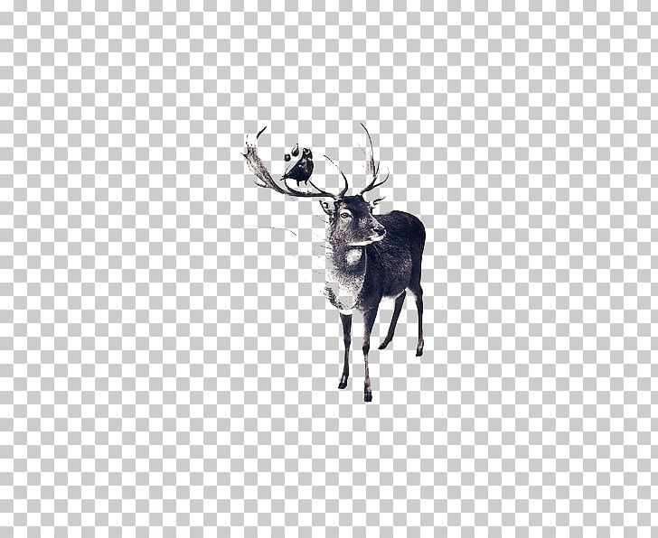 Pxe8re Davids Deer Drawing Watercolor Painting Illustration PNG, Clipart, Animal, Animals, Antler, Art, Artist Free PNG Download