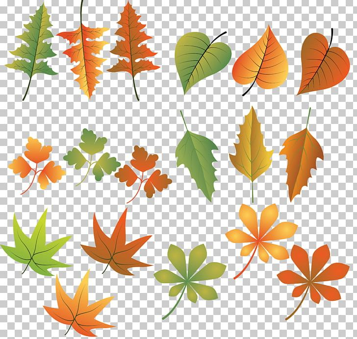 Autumn Leaf Color Drawing PNG, Clipart, Artwork, Autumn, Autumn Leaf Color, Branch, Drawing Free PNG Download