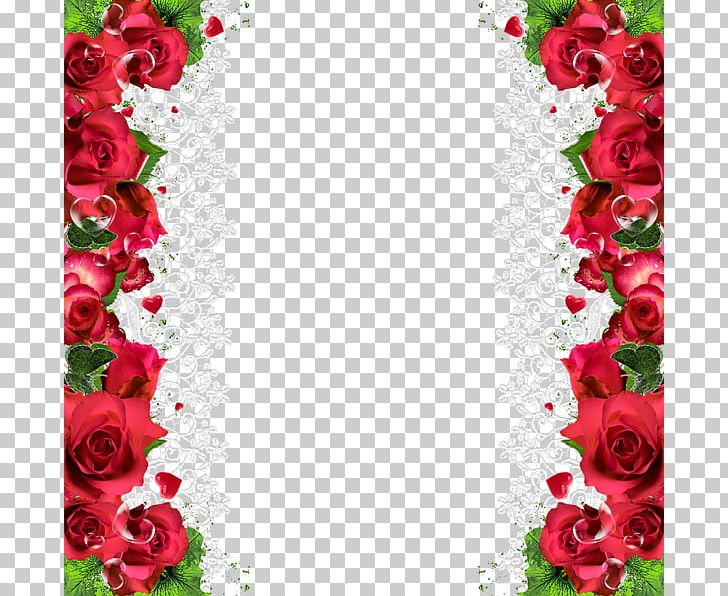 Rose Flower Red PNG, Clipart, Border, Border Frame, Certificate Border, Cut Flowers, Dahlia Free PNG Download