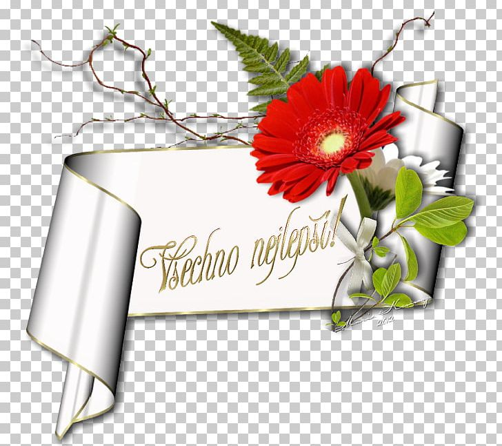 Birthday Greeting Note Cards Wish Holiday Name Day PNG Clipart