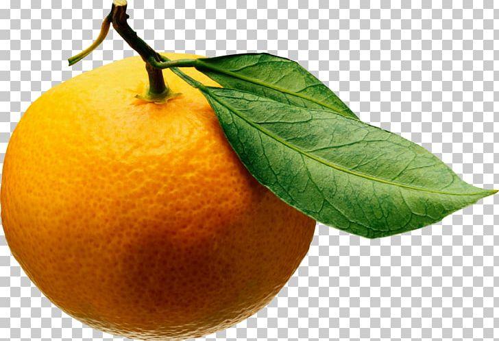 Juice Tangerine Mandarin Orange Clementine Fruit Salad PNG, Clipart, Bitter Orange, Canning, Chenpi, Citric Acid, Citron Free PNG Download