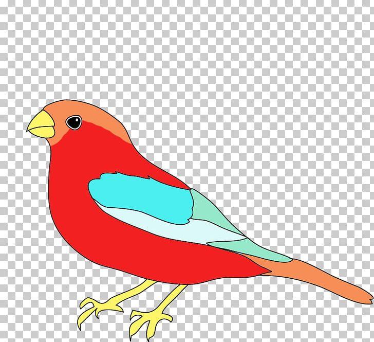 Drawing Birds Color Png Clipart Animals Art Beak Bird
